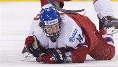 Den D pro Zachu a spol. Jak dopadne na draftu NHL silný český ročník?