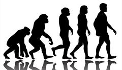 Téměř polovina Američanů nevěří v evoluci