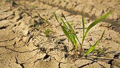 Sníh nestačil, sucho pod zemí trvá. Když bude v létě znovu horko, leckde může dojít pitná voda