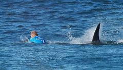 'Viděl jsem obří čelisti.' Když útok žraloka mění lidské osudy