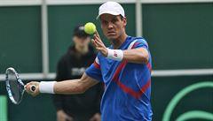 Srovnáno. Berdych v Davis Cupu hladce napravil Štěpánkovo zaváhání