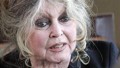 Vládnou nám zbabělci a bezkulčáci, volá Bardotová. Kritizuje 'bojovníky proti rasismu'