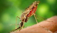 DDT. Zázračný zachránce životů, nebo zákeřný zabiják dětí?