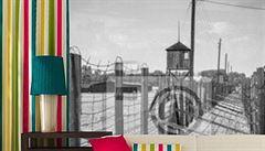 """Koncentrák na zdi. Polská firma prodává """"nevšední"""" tapety"""