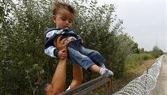 Maďaři zbrzdili příliv běženců: v pondělí jich přišlo 9380, v úterý už jen 367