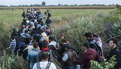 Uprchlík popsal cestu Evropou: ochotní Řekové, ziskuchtiví Srbové a zlí Maďaři