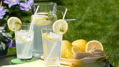 'Domácí' limonády v restauracích frčí. Může jít ale o předražené náhražky