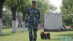 Přehlídka v Pekingu sází na zvířecí válečníky. Před Zemanem budou bojovat opice