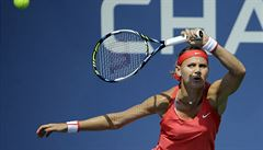 Berdych na úvod US Open vyhrál ve třech setech, Šafářová překvapivě končí
