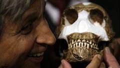 Vědci objevili v JAR nový pradávný lidský druh, pojmenovali ho homo naledi