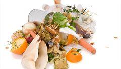 Čtvrtina Čechů vyhazuje nespotřebované potraviny do koše, říká průzkum