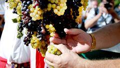 Kam na Svatováclavské slavnosti nebo vinobraní? Přinášíme tipy na víkend