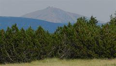 V Krkonoších skončil zákaz vstupu do některých míst, zavedenený kvůli sběru borůvek