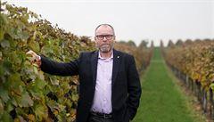 Hodně lidí se nechá vědomě podvést pančovaným vínem, říká šéf vinařů