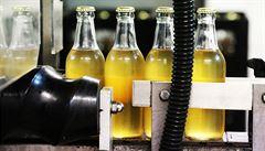 Oblíbenost ciderů roste. Čeští výrobci zvyšují výrobu a plánují expanzi do zahraničí