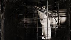 NEFF: Zrušení výstavy ženských aktů? Fanatický hovadismus a zbabělost