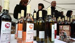 Svatomartinské nabídne v Česku stovka vinařů. Převládají bílá vína