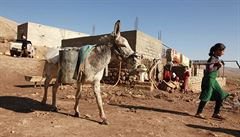 V Iráku byl objeven masový hrob jezídů. Obsahuje více než sto těl
