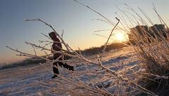 Mrazivé dny vydrží do konce ledna, v únoru se oteplí