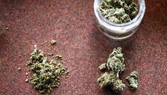 Legální marihuana? Uruguay je pro, prodej zahájí napřesrok