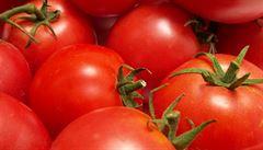 Za zeleninu si oproti loňsku výrazně připlácíme. Rajčata zdražila až o polovinu