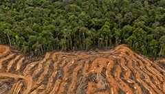 Ilegální těžaři zabili v Brazílii domorodého ochránce pralesa, vražda vzbuzuje obavy z rostoucího násilí
