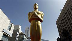 Budou Oscaři ještě vůbec o filmech? Na umělecké galavečery se dostává politika