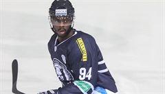 Rasismus na hokeji. Na Švéda černé pleti házeli fandové Spartaku Moskva banány