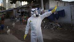 Postižených virem zika se rodí čím dál více, něco se muselo stát, říká epidemiolog