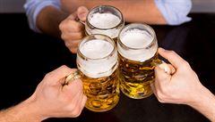 Spodně kvašená 11° a 12° piva budou zřejmě i nadále ležáky