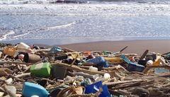 Život v době plastové. Nová součást plastů škodí plodnosti