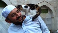 Imám v Istanbulu otevřel mešitu pouličním kočkám, stal se senzací internetu