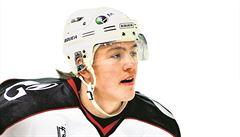 Hokejová úmrtí: Příběhy těch, kterým se oblíbený sport stal osudným