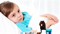 Čeští vědci ukázali, jak bakterie černého kašle odzbrojí imunitu