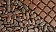 Obliba čokolády klesá, Češi jí snědí ročně asi čtyři kilogramy