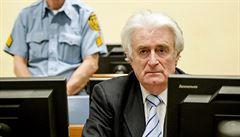 Tribunál v Haagu zakázal vězněným válečným zločincům skypovat. Karadžić ze Srebrenice chystá žalobu