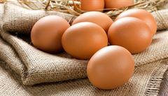 Zeptali jsme se vědců: Jak je možné, že jedno vejce obsahuje dva žloutky?