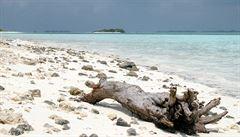 5 důvodů, proč se vydat levně na Maledivy