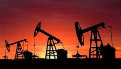 Politická krize ve Venezuele narušuje trh s ropou, varuje Mezinárodní agentura pro energii