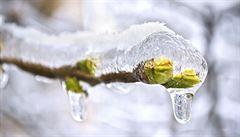 Čtvrteční ráno přineslo v Česku mrazy. Na Kvildě bylo naměřeno -10 stupňů