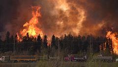Lesy ČR upozorňují nad nebezpečím požárů. Varují před kouřením a rozděláváním ohně