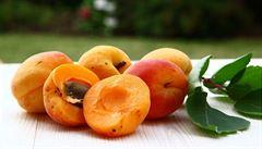 Sladké meruňky. Zlatý poklad již po staletí