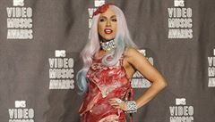 O Lady Gaga se bude učit na univerzitě, je to prý 'sociologický fenomén'