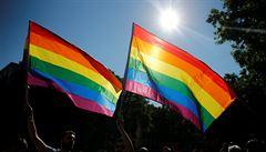 Důležitý den pro gaye a lesby se blíží. Sněmovna bude rozhodovat o jejich manželství