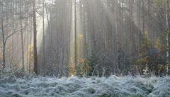 Mrazivé ráno: nejen v horských kotlinách spadly teploty pod nulu