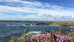 Vůně moře, deště a parfémů. Irské Galway je město zázraků