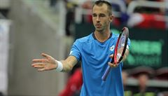 Komplikace pro 1. kolo Davis Cupu: Pavlásek a Rosol se kvůli zdraví omluvili