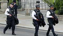 Lékaři, skauti či učitelé. V síti britské policie uvízly stovky pedofilů