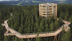 Stezka korunami stromů láme rekordy. Prošlo ji 620 tisíc lidí