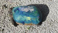 Lidé na Floridě přebarvují želvám krunýře, úřady se snaží je odradit